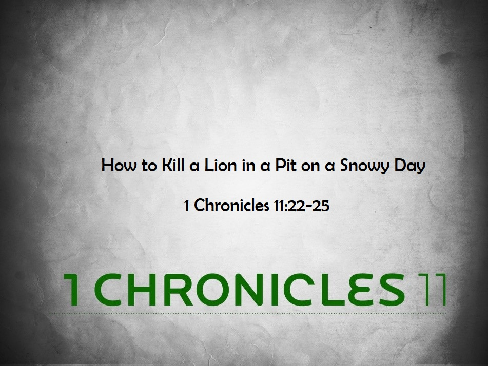 How to Kill a Lion in a Pit on a Snowy Day